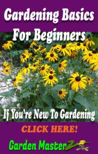 Gardening Basics For Beginners Pinterest Pin Image