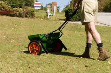 how to apply lawn fertilizer image