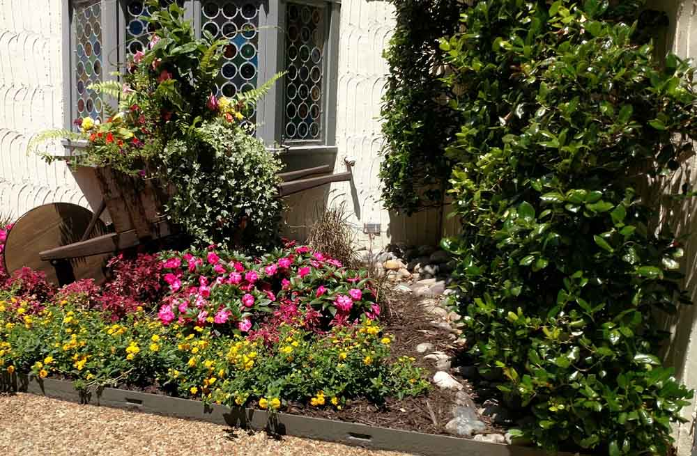 how to plant a garden photo