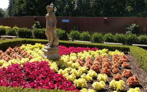 planting flower gardens image