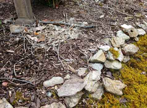 rock wall debris for spring clean up