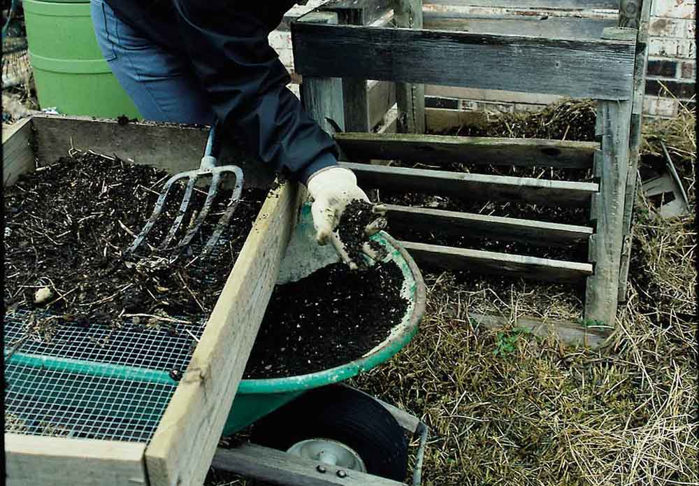 how to start composting image