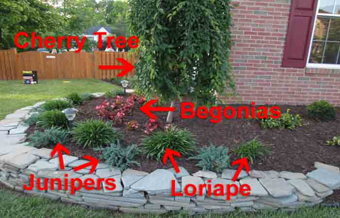 beginner landscaping idea with rock wall pic2