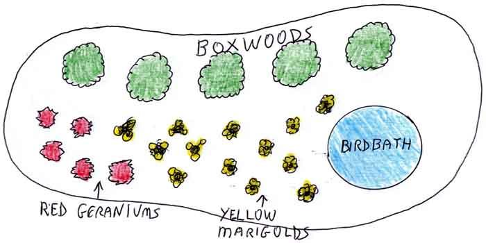 beginner landscaping step3