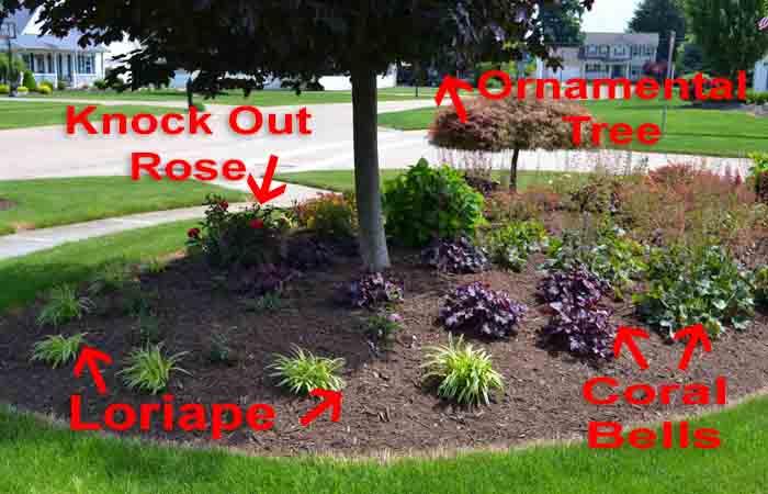 easy beginner landscape idea pic1