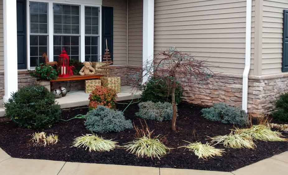 easy landscaping ideas for beginners image