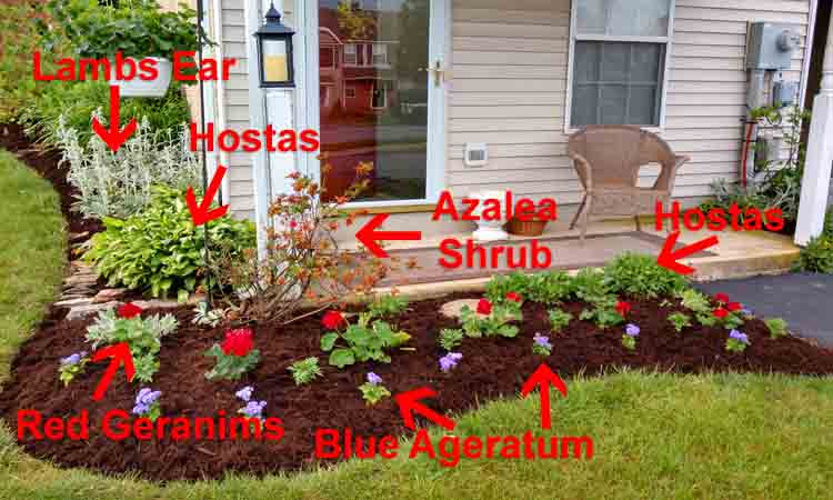 simple front garden landscaping idea image